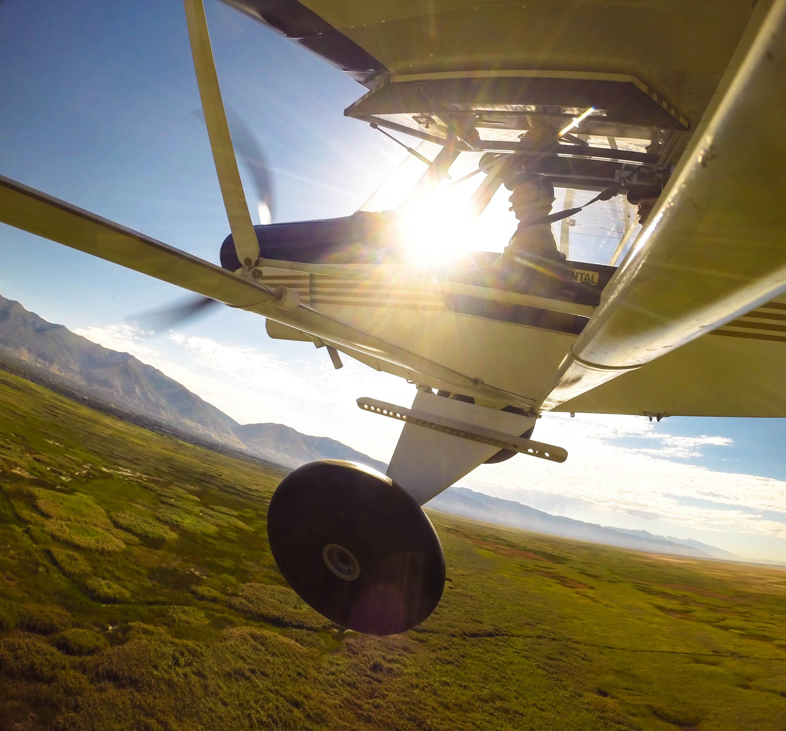 Aircraft of the Week – Super Cub