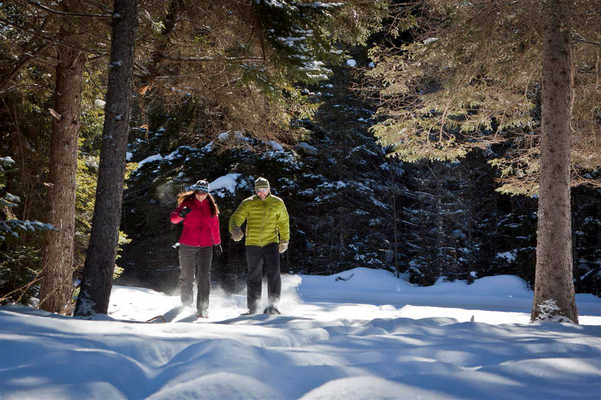 Snowshoeing around the Whitehead Mountain area - Accessible by the Lake Placid Airport