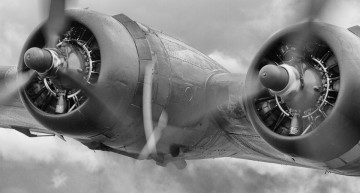 The B-17 All American: The Truth Behind the Tall Tale