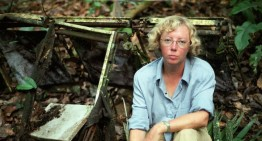 The LANSA Flight 508 Crash: Juliane Koepcke and 11 Days of Survival