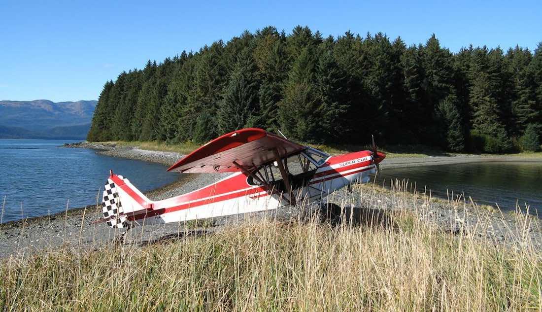 Piper PA-18 Super Cub • Disciples of Flight