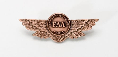 The FAA WINGS program basic pin