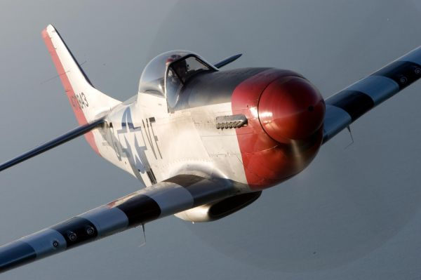 "P-51 Mustang ""Red-Nose"" a historical World War 2 aircraft owned by the CAF"