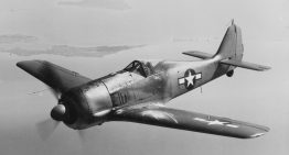 Focke-Wulf Fw 190: The Butcher Bird of WWII